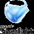 Silverlight скачать бесплатно